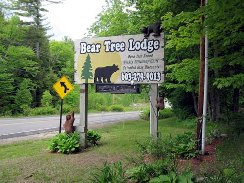 Bear Tree Lodge Cover Picture