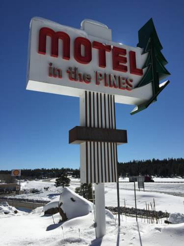 Motel In The Pines Cover Picture