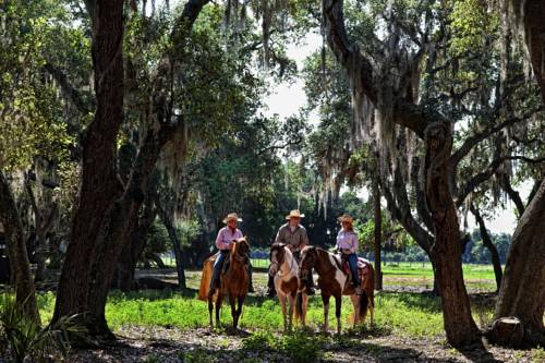 Westgate River Ranch Resort & Rodeo Cover Picture