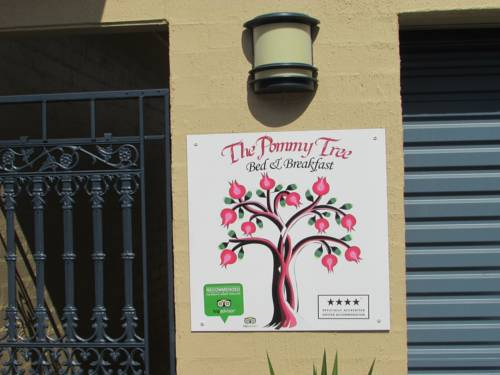 The Pommy Tree Cover Picture