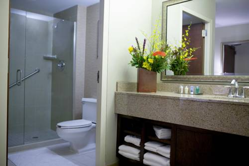 DoubleTree by Hilton Rochester - Mayo Clinic Area Cover Picture