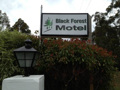 Black Forest Motel Cover Picture