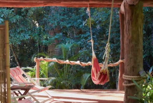 Cedar Park Rainforest Resort Cover Picture