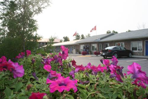 Moonlight Inn & Suites Cover Picture