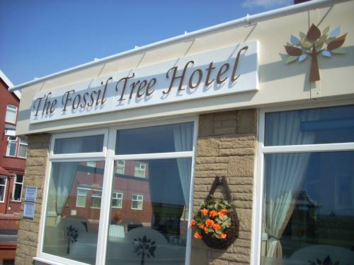 The Fossil Tree Hotel Cover Picture
