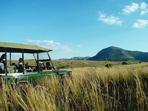 Tiveka Game Lodge Cover Picture