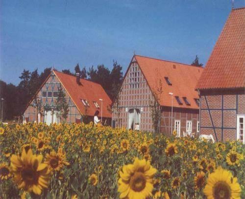 Rundlingsdorf Sagasfeld Cover Picture