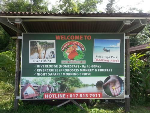 Monkey Top Safari Cover Picture