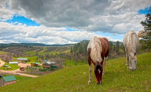 Diamond 7 Bar Guest Ranch Cover Picture