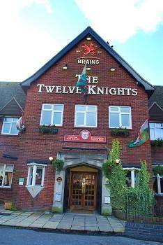 The Twelve Knights Cover Picture