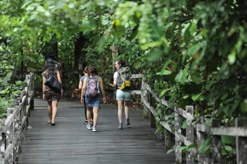 Permai Rainforest Resort Cover Picture