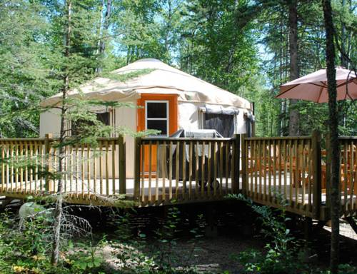 Flora Bora Forest Lodging Cover Picture