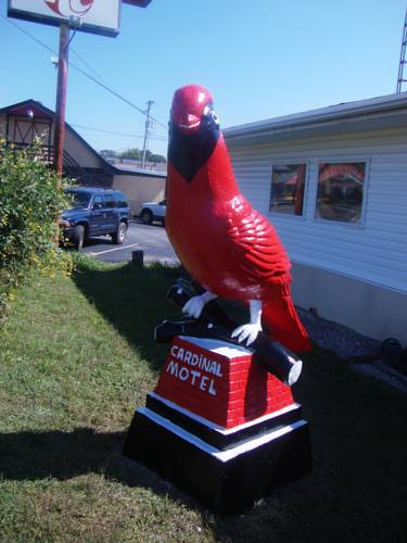 Cardinal Motel Bowling Green Cover Picture