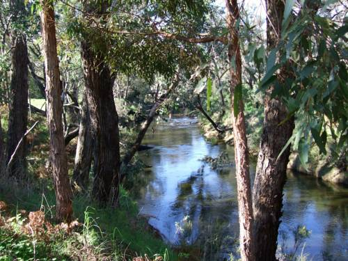 Nannup Riverview Cottage Cover Picture