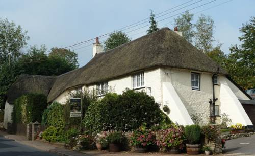 Wellington Farm Guesthouse and Tea Room Cover Picture