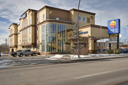 Comfort Inn and Suites University Cover Picture