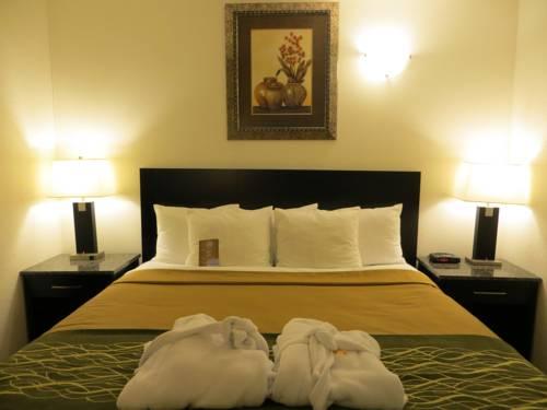Comfort Inn & Suites Downtown Edmonton Cover Picture