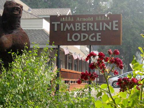 Arnold Timberline Lodge Cover Picture
