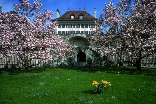Seminarhotel Gerzensee Cover Picture