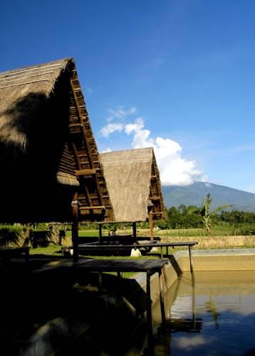 Desa Sawah Cover Picture