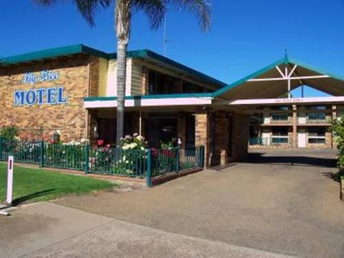 Fig Tree Motel Cover Picture