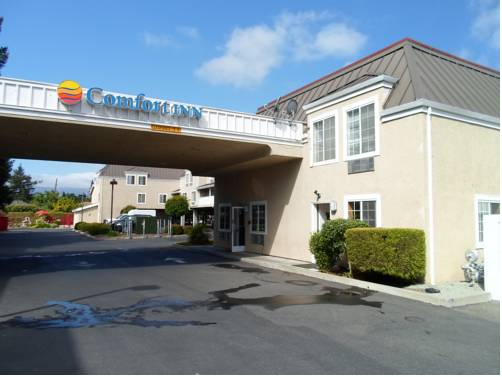 Comfort Inn Redwood City Cover Picture