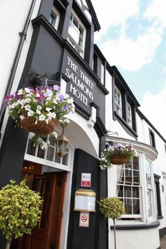 Three Salmons Hotel Cover Picture