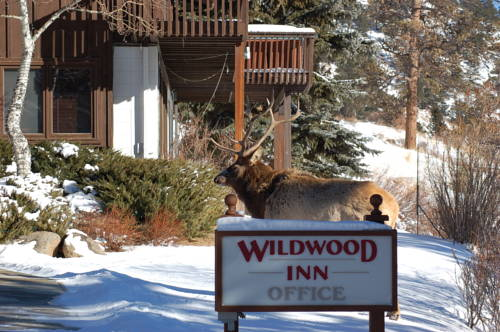 Wildwood Inn Cover Picture