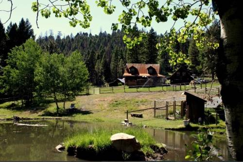 Chocolat Moose B&B Cover Picture