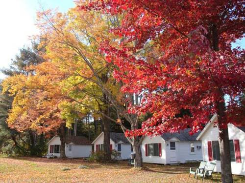 Cozy Cottages and Otter Valley Winery Cover Picture
