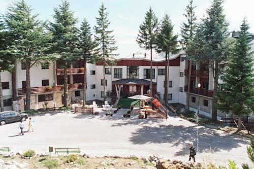 Cipriani Park Hotel Cover Picture