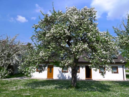 Gästehaus Apfelbaum Cover Picture