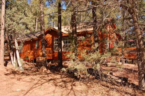 Kamp Kiwis Cabins Cover Picture