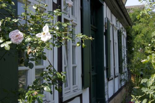 B&B Rosindell Cover Picture