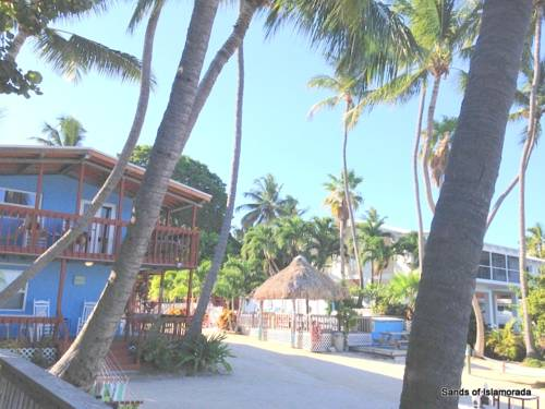 Sands of Islamorada Cover Picture
