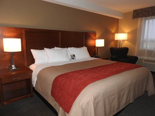 Comfort Inn & Suites Langley Cover Picture