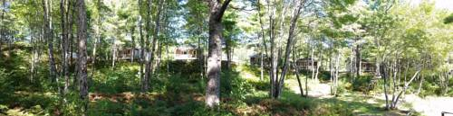 Roseway River Cottages Cover Picture
