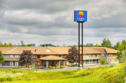 Comfort Inn Newmarket Cover Picture