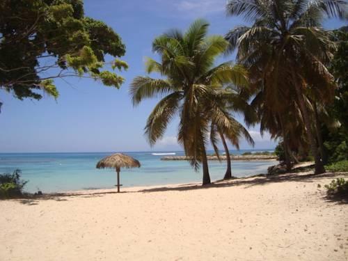 Nid tropical pour deux Cover Picture