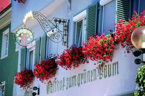Hotel Restaurant Grüner Baum und Altes Tor Cover Picture