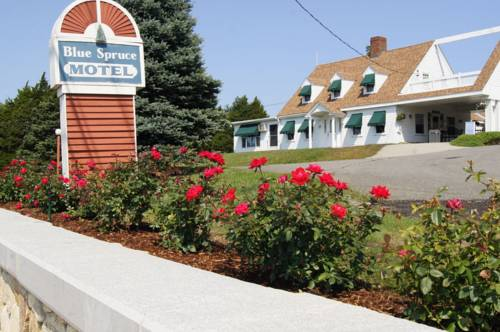 Blue Spruce Motel & Townhouses Cover Picture
