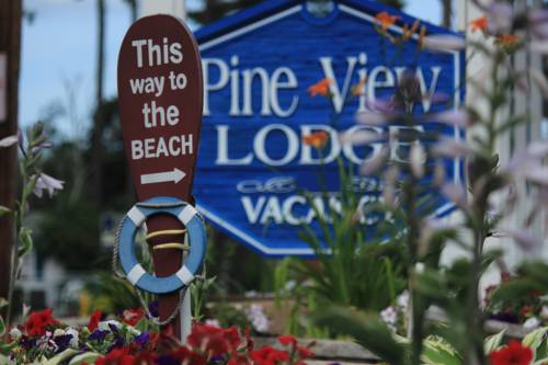 Pine View Lodge Cover Picture