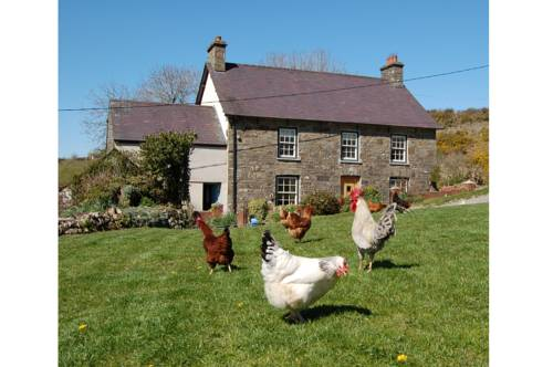 Nantgwynfaen Organic Farm B&B Wales Cover Picture