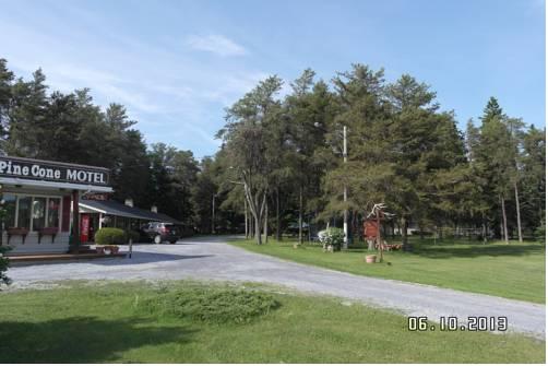 Pinecone Motel Cover Picture