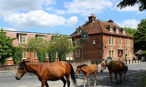 The Bell Inn Hotel Cover Picture