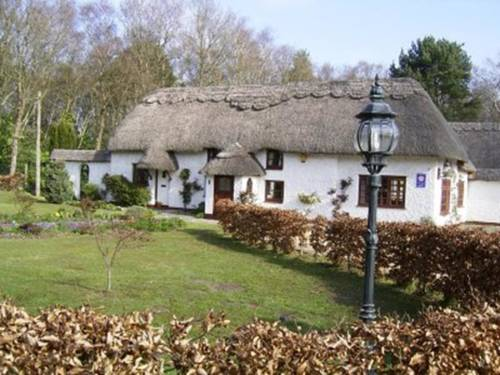 Thatch Cottage Guest House Cover Picture