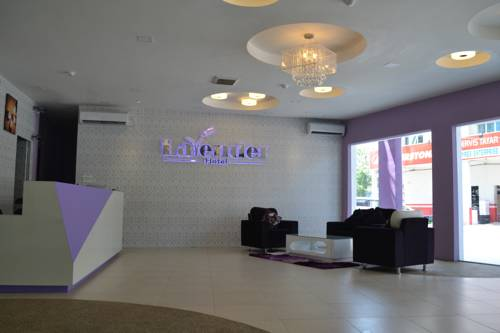 Lavender Hotel Cover Picture