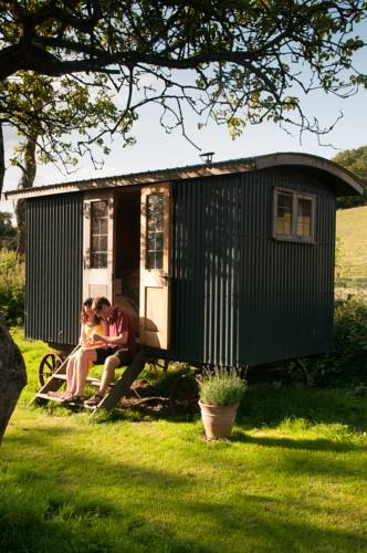 Shed and Breakfast Cover Picture