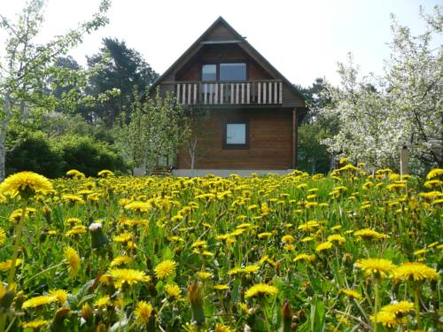 Holiday House Niedras Jurmala Cover Picture