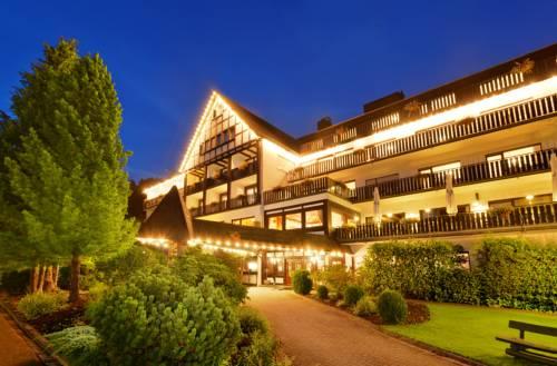 Sauerland Alpin Hotel Cover Picture